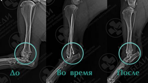 skrinshot-sr-02.12.20-183441.jpg